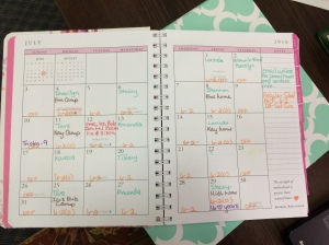 My monthly at-a-glance is vital. I need to be able to see quickly the most important things for the month. I will not buy a planner without this.