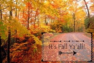 its-fall-yaall