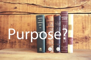 gorgeous-purpose2