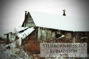 stubbornness-to-submission